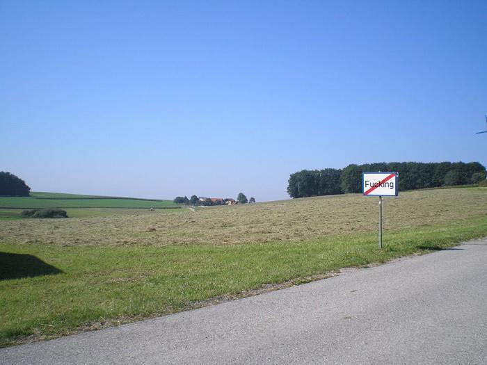 p8220134.jpg